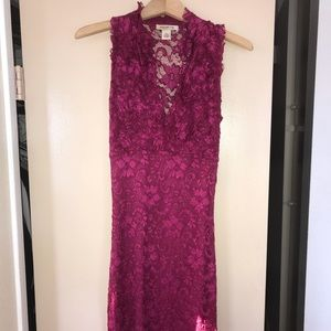 Pink Arden b lace stretchy dress